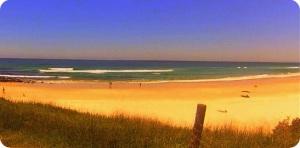 stoils shelly beach s c